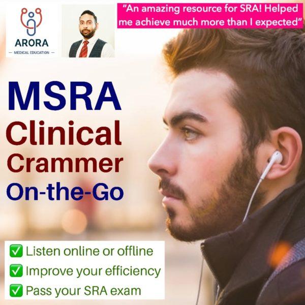 msra summer crammer audiobook cover