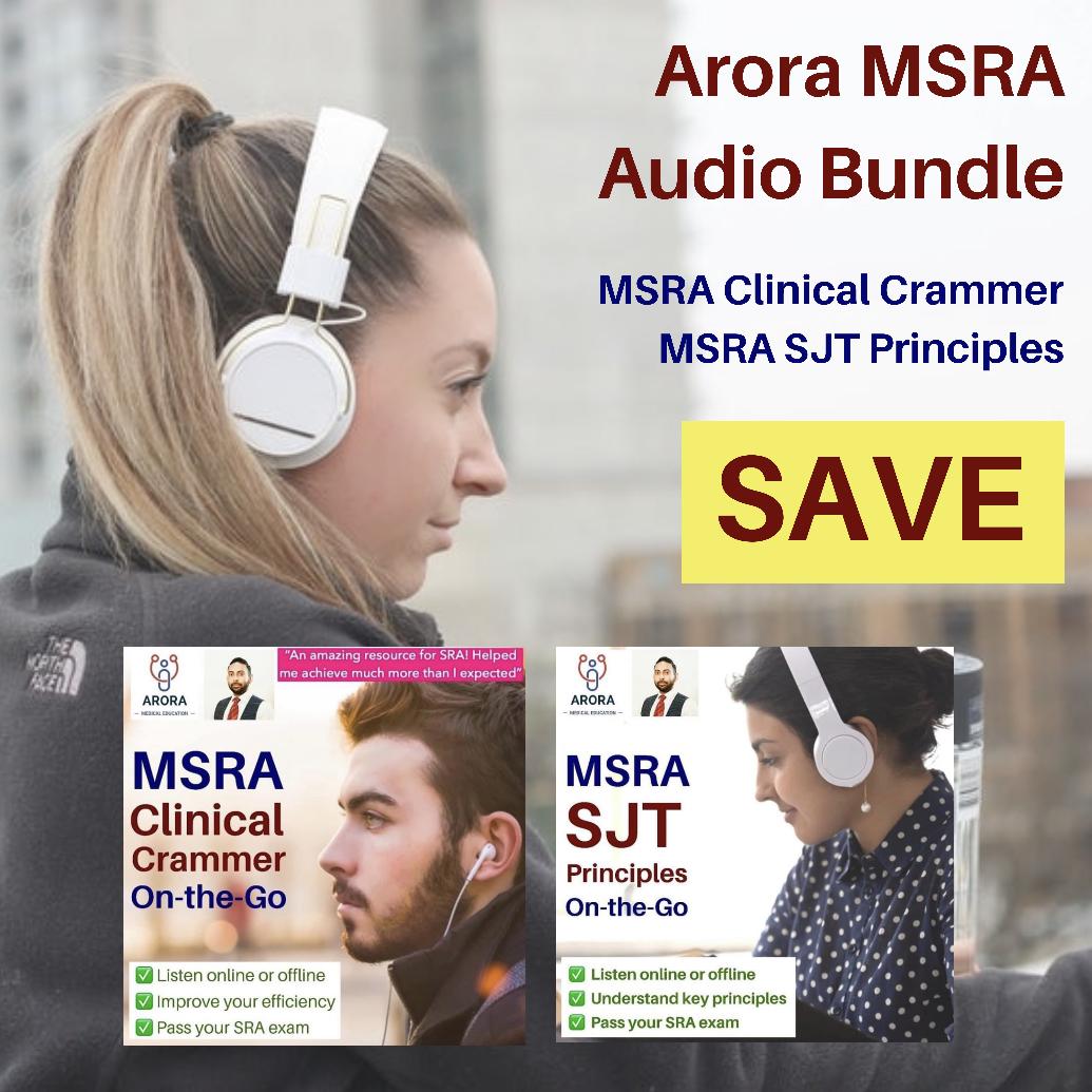 msra-audio-bundle-new.jpeg
